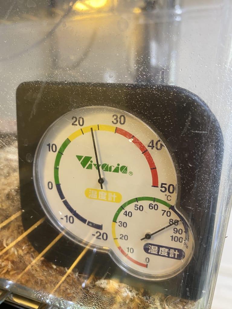 日中の温湿度:トゥストラヨルトカゲ(Lepidophyma tuxtlae)